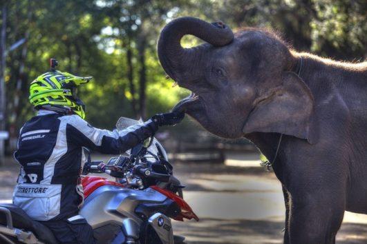 Motorcycle tour - 6 Days - Mae Hong Son - Sukhothai
