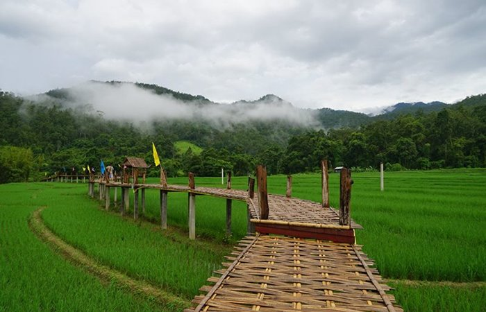 Pai - Kho Ku So - bamboo bridge
